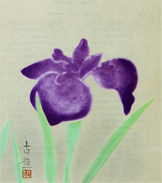 The hanasyobu (iris) by Kokei Kobayashi