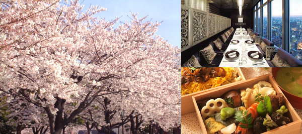Cherry Blossoms & Gourmet Tour of Tokyo