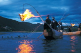 Cormorant Fishing - Gifu City